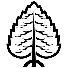 陰一本杉紋