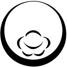 月輪に総覗き爪形鉢紋