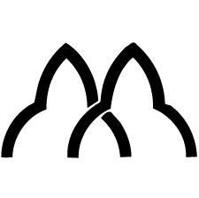 違い花山形紋