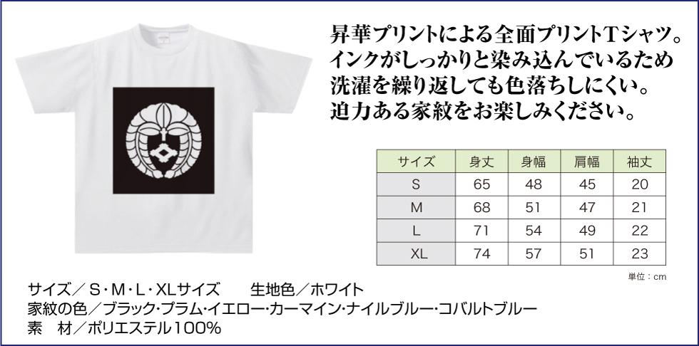 ドライTシャツNFW02