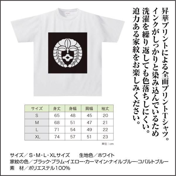 ドライTシャツNFW02s